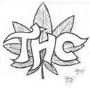 T h c