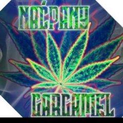 NacpanyGargamel